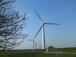 Wind turbines courtesy of M Schofield